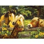 """SunsOut 52651 Puzzle zu 500-Teilen, by Linda Picken """"Pferde mit Fohlen"""""""