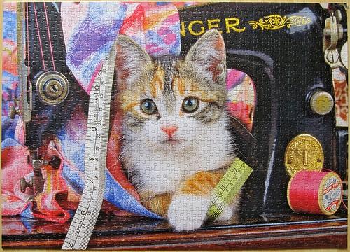 "Jumbo 01875 Puzzle zu 1000-Teilen, ""Katzen - Spielstunde"""